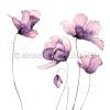 Alexandra Renke Designpapier Große Tulpen violet