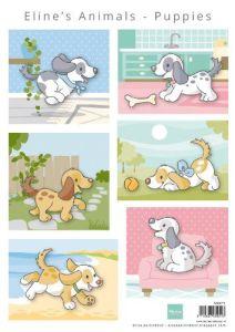Marianne D Knipvellen Eline's Dieren- Puppies