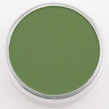 PanPastel Chrom.Oxide Green Shade 660.3
