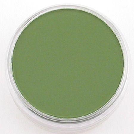 PanPastel Chrom.Oxide Green 660.5