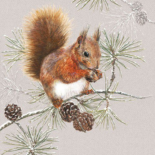 CraftEmotions servetten 5st - Eekhoorn in de winter 33x33cm Ambiente 33313445