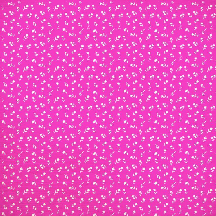 Happy Snaps 12x12 Scrapbook Paper Picture Perfect