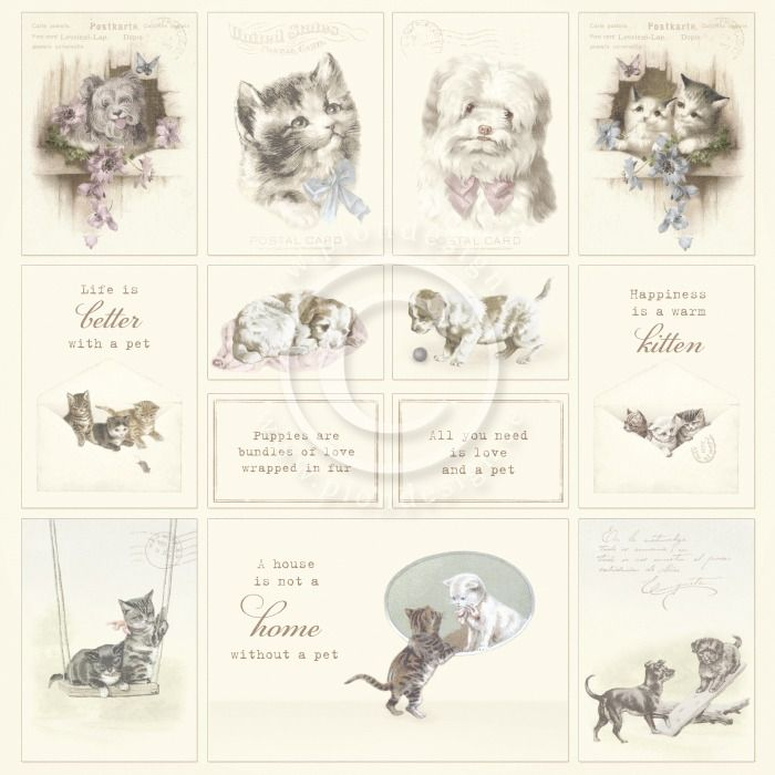Pion Design Our Furry Friends - Images from the Pas