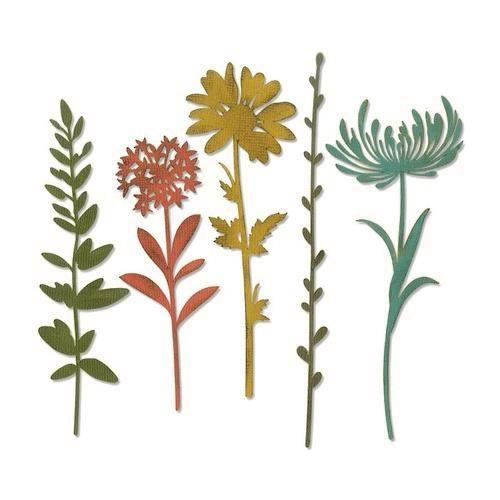 Sizzix Thinlits Die Set - 5PK Wildflower Stems #1 Tim Holtz