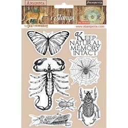 Stamperia Natural Rubber Stamp Amazonia Butterfly